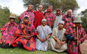 Retiro de ayahuasca de un día